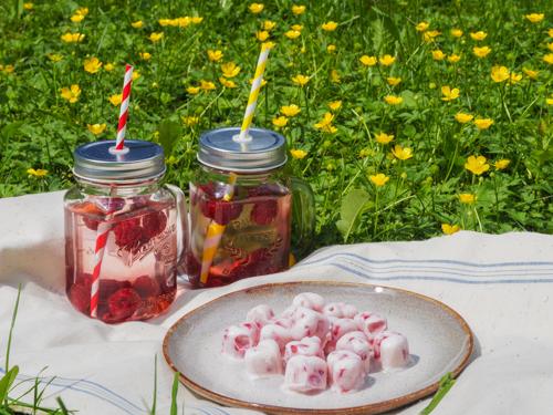 DIY Erdbeeren Frozen Joghurt selbst machen